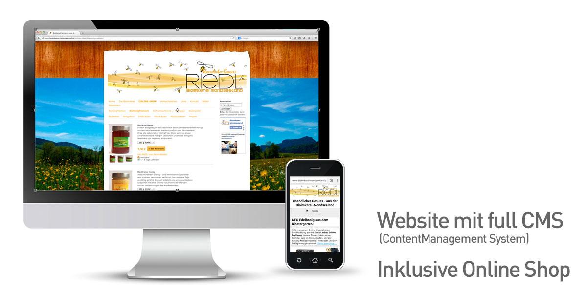 Riedl_website