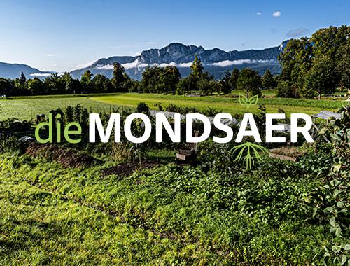 dsignery Gemeinschaftsgarten Mondsee