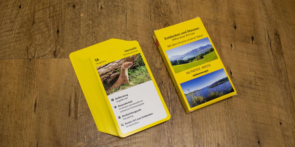 dsignery_Tourismus_Spielkarten_2